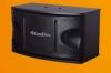 KaraDiva CS-450MKII Karaoke Speaker